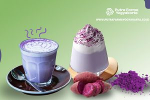 korean goguma latte