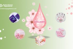 Top 5 Brand Collagen Drink HALAL dan BPOM