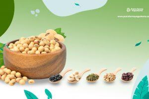 9 Manfaat Kacang Kedelai yang Bikin Takjub